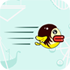 狂飙的小鸟