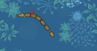 水蛇吃蝌蚪