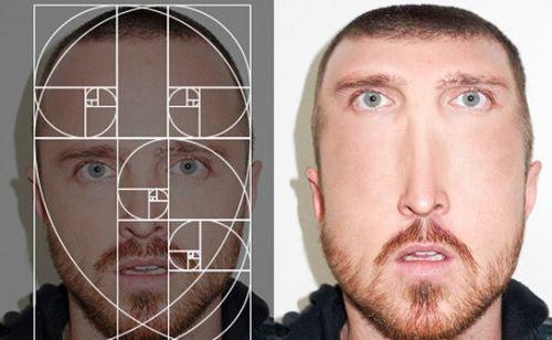 俄罗斯设计尸带你领略黄金分割名人脸