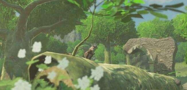 WiiU《塞尔达传说:荒野之息》需要3G容量