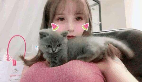 国内美女Coser私房照:上围能搁一只猫