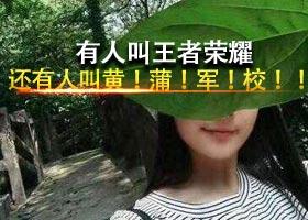 "<b>""王者荣耀""有伴了 重庆女生叫""黄蒲军校""</b>"