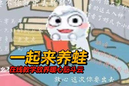 不养男人不养蛙 在线教学放养暖心筋斗云
